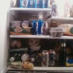 Katze in Kühlschrank