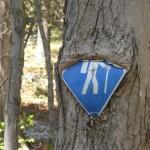 Schild in Baum