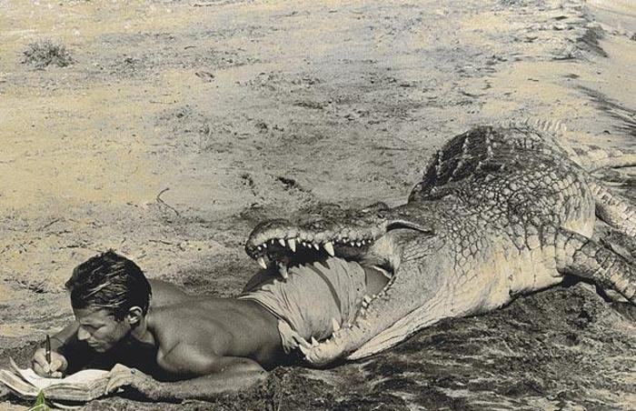 Krokodil frisst Mensch