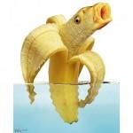 Bananenfisch