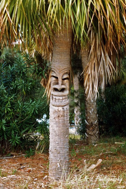 Baum-Clown