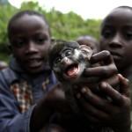 Kinder mit Affenbaby