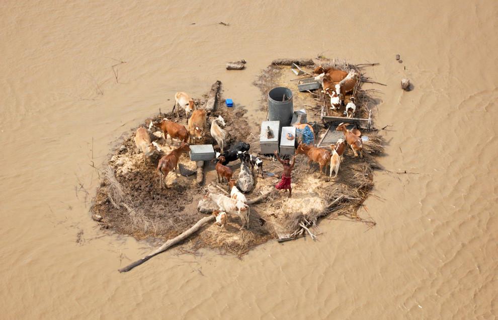 Mann mit Tieren auf schwimmender Insel