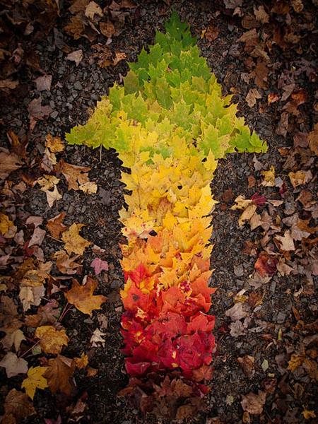 Pfeil aus Blättern