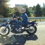 Hund auf Motorrad