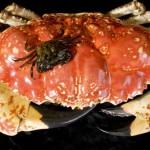 giant-crab-3