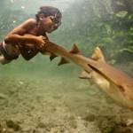 Junge mit Hai