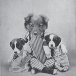 Harry_Whittier_Frees_-_Daddy_Fourpaw_with_Blink_and_Wink