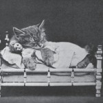 Harry_Whittier_Frees_-_Rosie_and_Jennie_Took_a_Cat-Nap