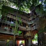 Das Baumhaus des Ministers