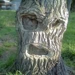 Gruseliger Baum