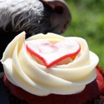 Hund frisst Kuchengebäck