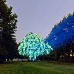 3d-tree-projections-clement-briend-14