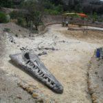Gondava_Plesiosaurio_Excavacion_Simulacion